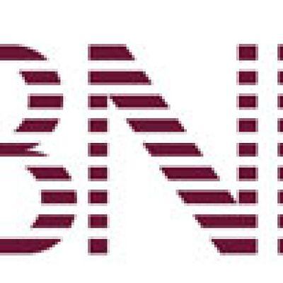 BNI Australaia Logo