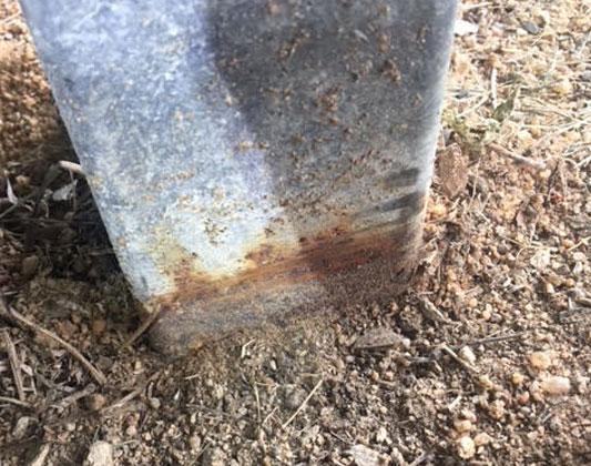 Termite Control Breaches